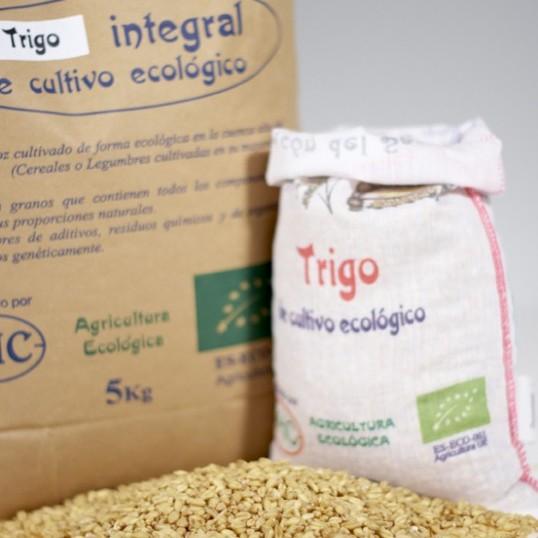 cereal-trigo-Integral-01