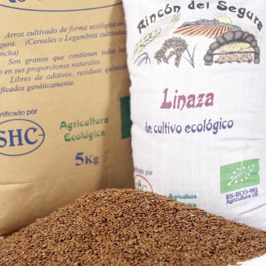 semillas-linaza-01