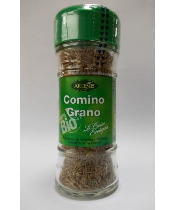 comino-ecologico-grano