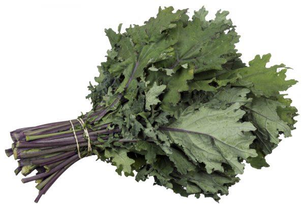 Kale-ruso-rojo
