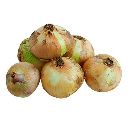 cebolla-semiseca