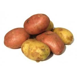 patata-roja-sin