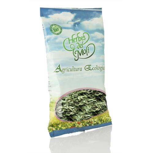 artemisa-planta-45-gr-herbes-del-moli