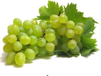 uva-blanca