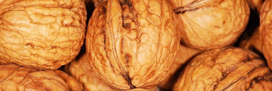 Propiedades de los frutos secos ecológicos